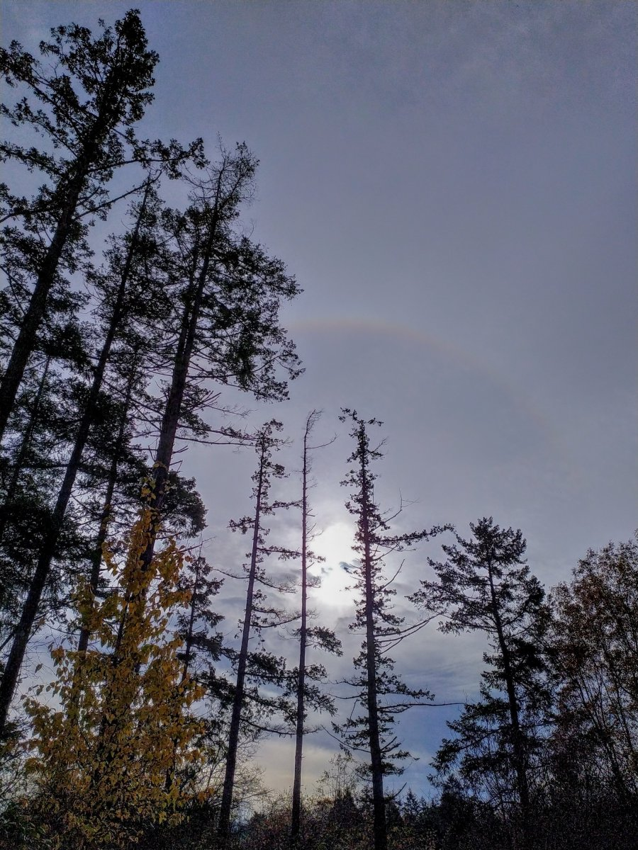 Sundogs, rainbows, Myalgic Encephalomyelitis, Galiano Island